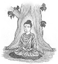 Buddha received Enlightenment while...