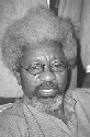 Wole Soyinka of Nigeria is known as a poet,...