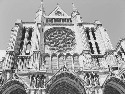 Chartres Cathedral. Courtesy of Lisa Kirchner.
