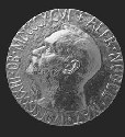 The Nobel prize functions as the highest honor...