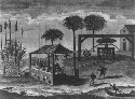 View of sugar mill in operation, Haiti, 1724....