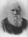 Charles Darwin in old age(From an undated Russian...