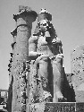 One of two colossal seated statues of Rameses II...