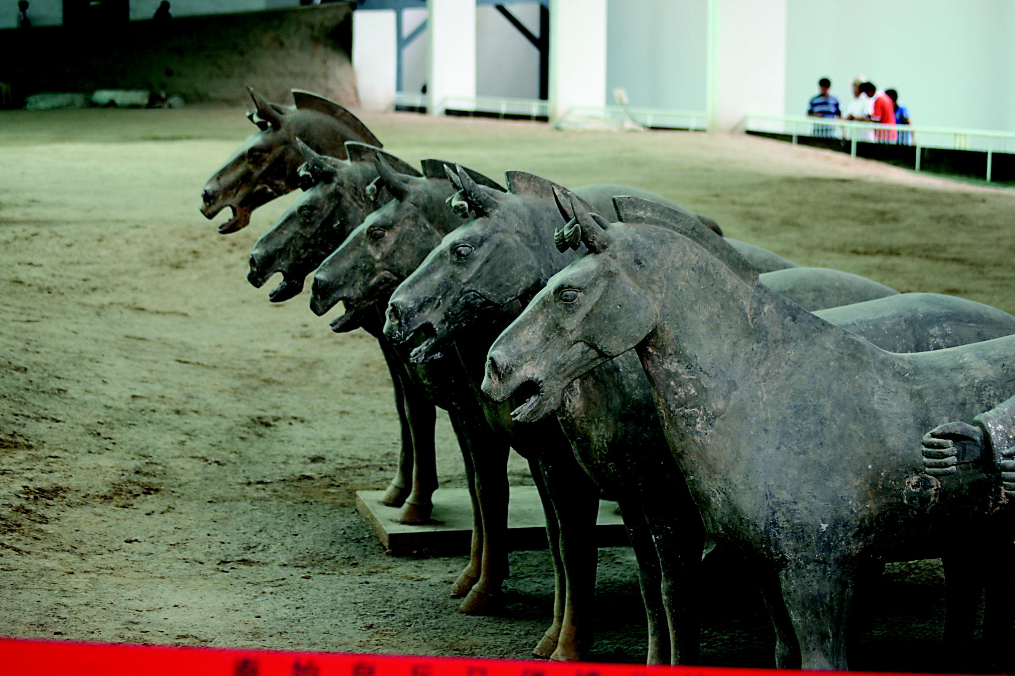 Terracotta Horses From The Mausoleum Of Qin Shi Huang Photo By Paul And Bernice Noll