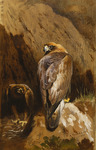 Golden Eagles at Their Eyrie, 1900 (pencil and watercolour heightened with white, on brown paper)