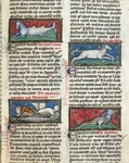 Ms 320 Fol.115r Sea Monsters, from 'De Natura rerum' by Thomas van Cantimpre (1201-72) (vellum)