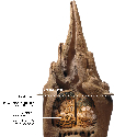 Cross-section of a cathedral termite mound. Food...