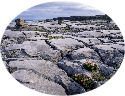 Burren limestone pavement, Ireland