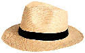 Panama hats are made from the leaves of the...
