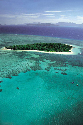 The Great Barrier Reef was formed by tiny...