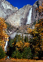 Dramatic Yosemite Falls plunging down 							the...