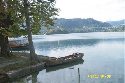 Due to siphoning of hypolimnic water, Lake Bled,...