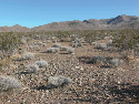 A piedmont bajada in the Mojave Desert: alluvial...