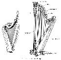 Harp [Fr. harpe; Ger. Harfe; It., Sp. arpa]