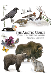 The Arctic Guide: Wildlife of the Far North by Sharon Chester