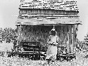 Sharecropper's cabin and sharecropper's wife. Ten...