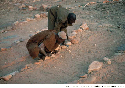 Dogon people of Mali perform a divination ritual...