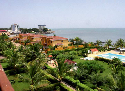 The lush African coastline in Conakry.