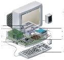 The main components of a computer are: (1) the...