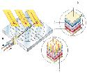 A solar (photovoltaic) cell (A) is made up of two...