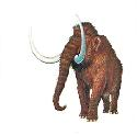 The mammoth was a hairy, elephant-like mammal...