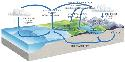 The Earth's water balance is regulated by the...