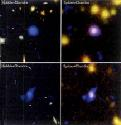 Black holes revealed in the Great Observatories...