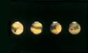 The rotation of Mars. A series of images taken by...