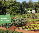 Michelle Obama created a new garden at the White...