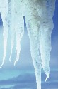 Ice cap climates have subfreezing temperatures...