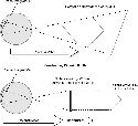 Reconstructing Physical Depth and the...