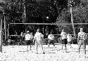 Volleyball (Amateur)