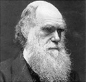 "Charles Darwin's ""survival of the fittest""..."