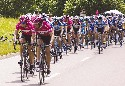 The main group of cyclists in the 2005 Tour de...