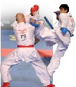Men's karate heavyweight finalists, 2006