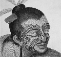 An illustration of a Maori chief, who is sporting...