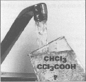 Chloroform and trichloroacetic acid, two common...